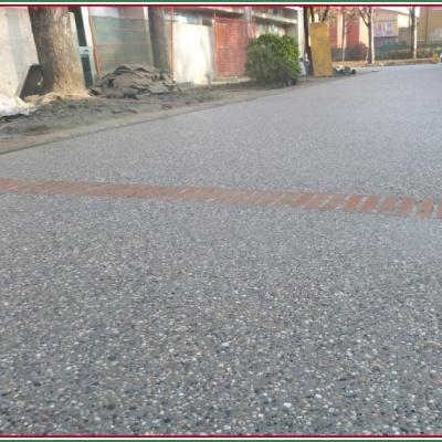 Viale in sasso lavato con inserti di mattoni in cotto a Piacenza