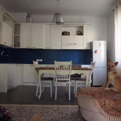 Paraschizzi per cucina a Parma in microcemento colorato blu